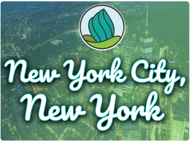 image of tall buildings from aerial perspective with blue and green overlay and the letters 'New York City, New York' in cursive and NDC logo at the top