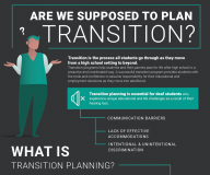 Cover image for the report titled Transition Planning